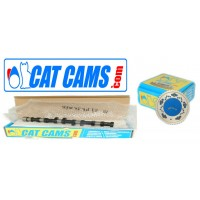 CATCAMS