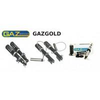 GAZSHOCKS GGA et GGP